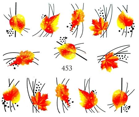 Naklejki wodne na paznokcie - 453 (1)