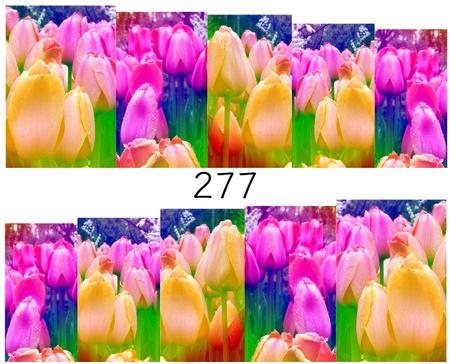 Naklejki wodne na paznokcie - 277 (1)