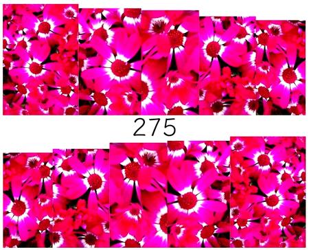 Naklejki wodne na paznokcie - 275 (1)