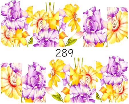 Naklejki wodne na paznokcie - 289 (1)
